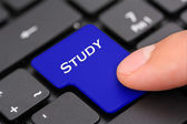 Study button — Stock Photo