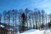 Winter landscape in Kircherg, Austria — Stockfoto
