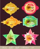 Colección de etiquetas vintage con flores románticas. Vector diseño conjunto — Vector de stock