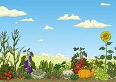Vegetable garden bed — Stock Vector