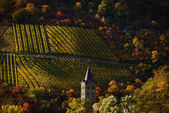 Autumncolours — Stockfoto
