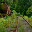Abandoned train — Stock Photo