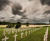 World War One graveyard — Stock Photo