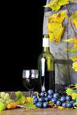 Tasting wine four — Stock Photo