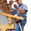 Woodworking carpenter — Stock Photo