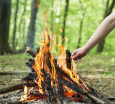 Forest   bonfire recreation — Stock Photo