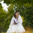 Beautiful young bride sitting in autumnal park — Stock Photo