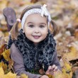 Adorable little girl with autumn leaves in the beauty park — Foto Stock