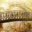 Old bridge in autumn misty park — Stock Photo