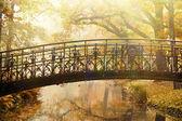 Old bridge in autumn misty park — Stock Photo
