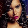 Sexy woman behind wire fence — Stock Photo #33316993