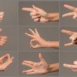 Human Hand collection, different hands, gestures, signals and signs — Stock Photo #48521987