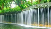 Flowing water at Batanic Gardens — Stock Photo