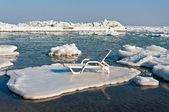Trestle Bed On a Floe — Stock Photo