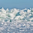 Ice Floes - Stock Photo
