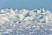 Ice Floes — Stockfoto