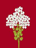 Bouquet de marguerite — Vecteur