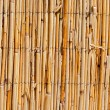 Stock Photo: Wattle Fence