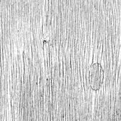 Fiber Wooden Texture — Vector de stock