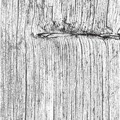 Dry Wooden Texture — Stock Vector
