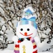 Stock Photo: Smiling snowmin snow as no name toy