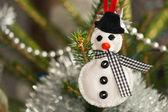Sentivo il pupazzo di neve — Foto Stock