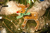 Gingerbread Rudolph — Stock Photo