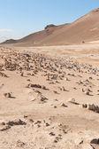 Icelanding rocky landscape — Stock Photo