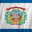 Flag of West Virginia, USA - Foto Stock