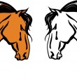 Horse head - Stock Vector