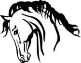Arabian horse head — Stock Vector