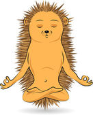 Hedgehog doing yoga-meditation — Stock Vector