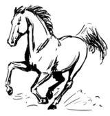 Galloping horse — Stock Vector