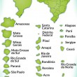 Map of Brazil — Stockvector #39279063