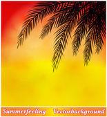 Background summer evening — Stock Vector