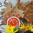 Stock Photo: Alarm clock, calendar, dried leaves, yellow flowers and time