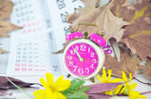 Alarm clock, calendar, dried leaves, yellow flowers and time — Stock Photo