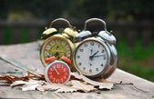 Ancient alarm clocks — Stock Photo