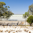 Outback Lake — Stock Photo