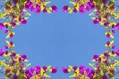 春の花のフレーム — ストック写真