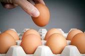 Hand Picking Eggs — Stock Photo