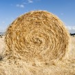 Hay Bales — Stock Photo #19451231