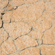 Stock Photo: Cracking Earth