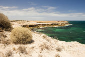 Avustralya kıyıları — Stok fotoğraf