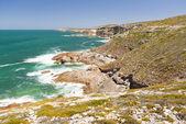 Güney Avustralya kıyıları — Stok fotoğraf