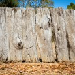 Stock Photo: Old Wooden Fence