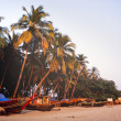 Goa India — Stock Photo #22959476