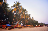 Goa India — Stock Photo