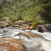 MacKenzie Falls, Grampians — Stock Photo
