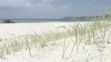 4 x 4 plaj — Stok video